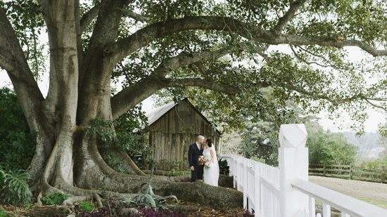 Relaxed Tocal Homestead Wedding053