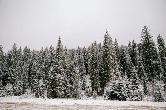Italian Winter Engagement045