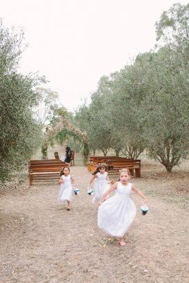 providence-gully-woodland-wedding20160912_2446