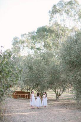 providence-gully-woodland-wedding20160912_2463