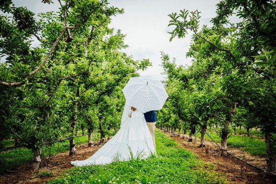 Vintage Inspired Western Australian Wedding044