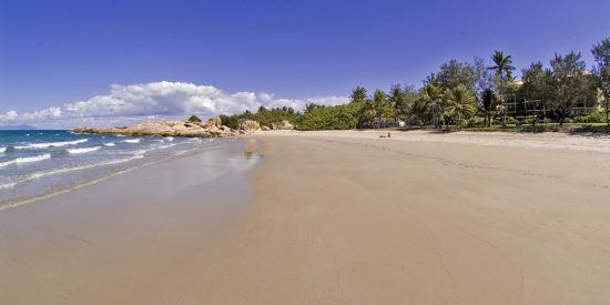 rose-bay-resort-beach-beach