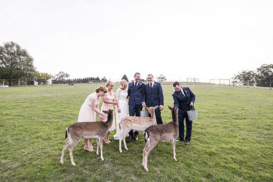 pretty-gum-gully-farm-wedding20160507_4494