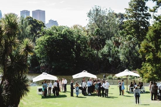 taxodium-lawn-royal-botanic-gardens
