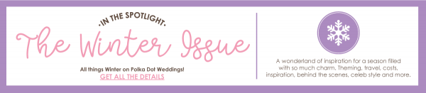 PDB Blog Banner WINTER 1200 x 261px preview