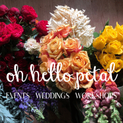 Oh Hello Petal Made banner