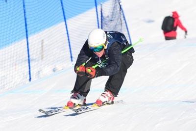 FIS Skier X