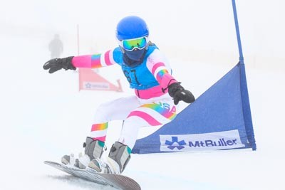 Division 4 & 5 Girls Snowboarding GS Action