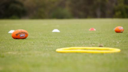 Footy balls and hoops lying on the grass