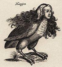 Harpij   i.i schipper 1660  graveur matthius merian  naar j.jonstons'  naekeurige beschryvingh van de natuur