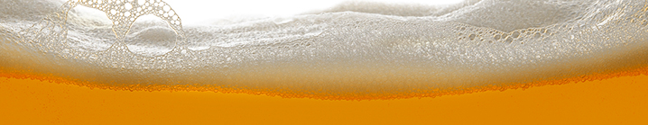 Homebrewing 101 (Wgtn)