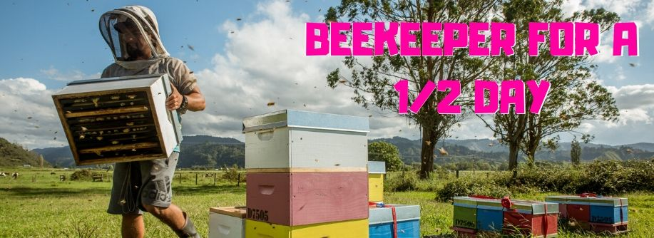 Bee A Beekeeper For A Half A Day