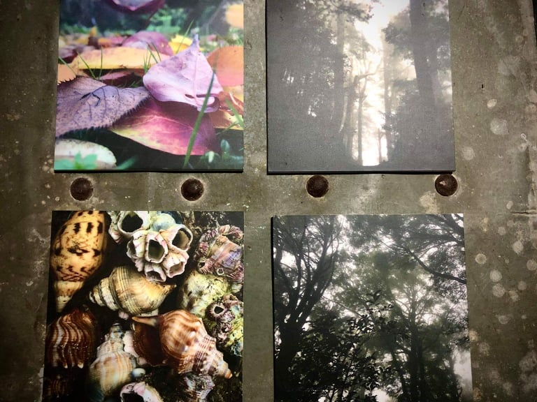 4 Original Photos On Palight Board By Carly Thomas