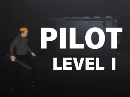 Pilot - Level I