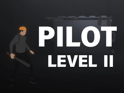 Pilot - Level II