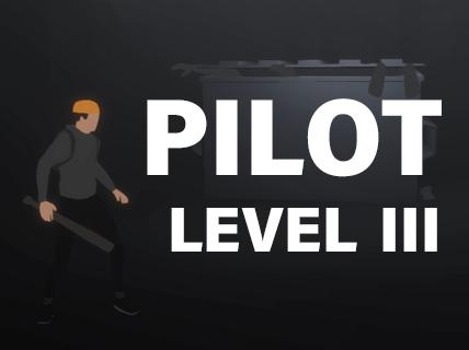 Pilot - Level III