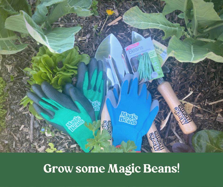 Grow Some Magic Beans!