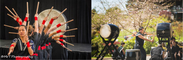 Japan Day and Cherry Blossom Festival