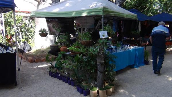 Broome market stall