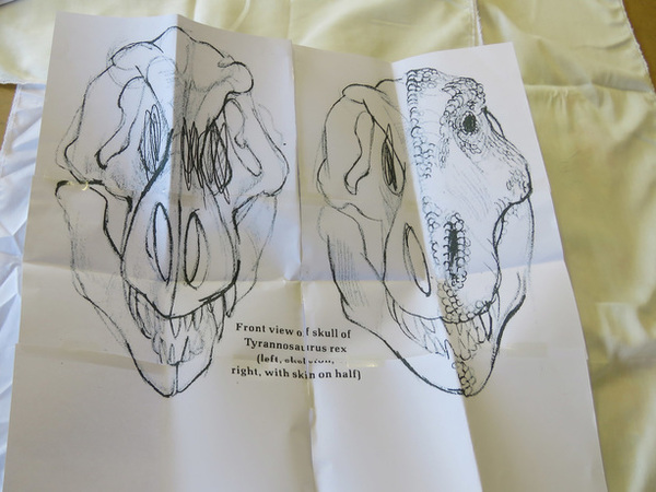 T rex skull embroidery