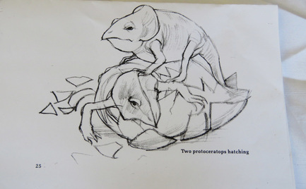 Two Protoceratops Hatching