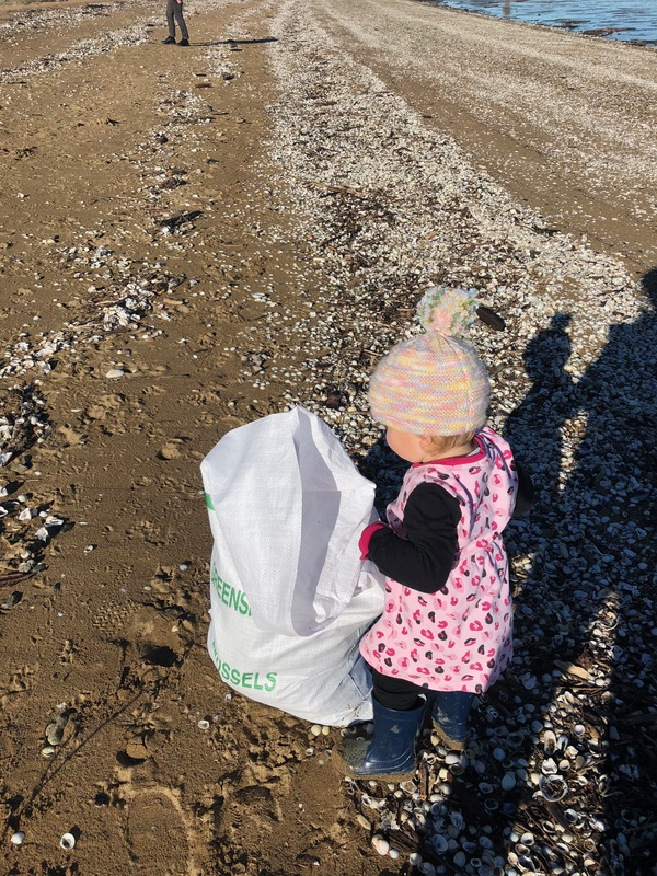 Beach Clean Up  A family day.