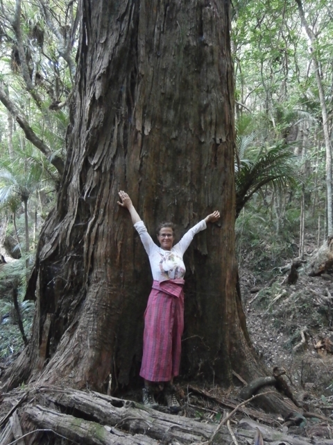 me by the totara