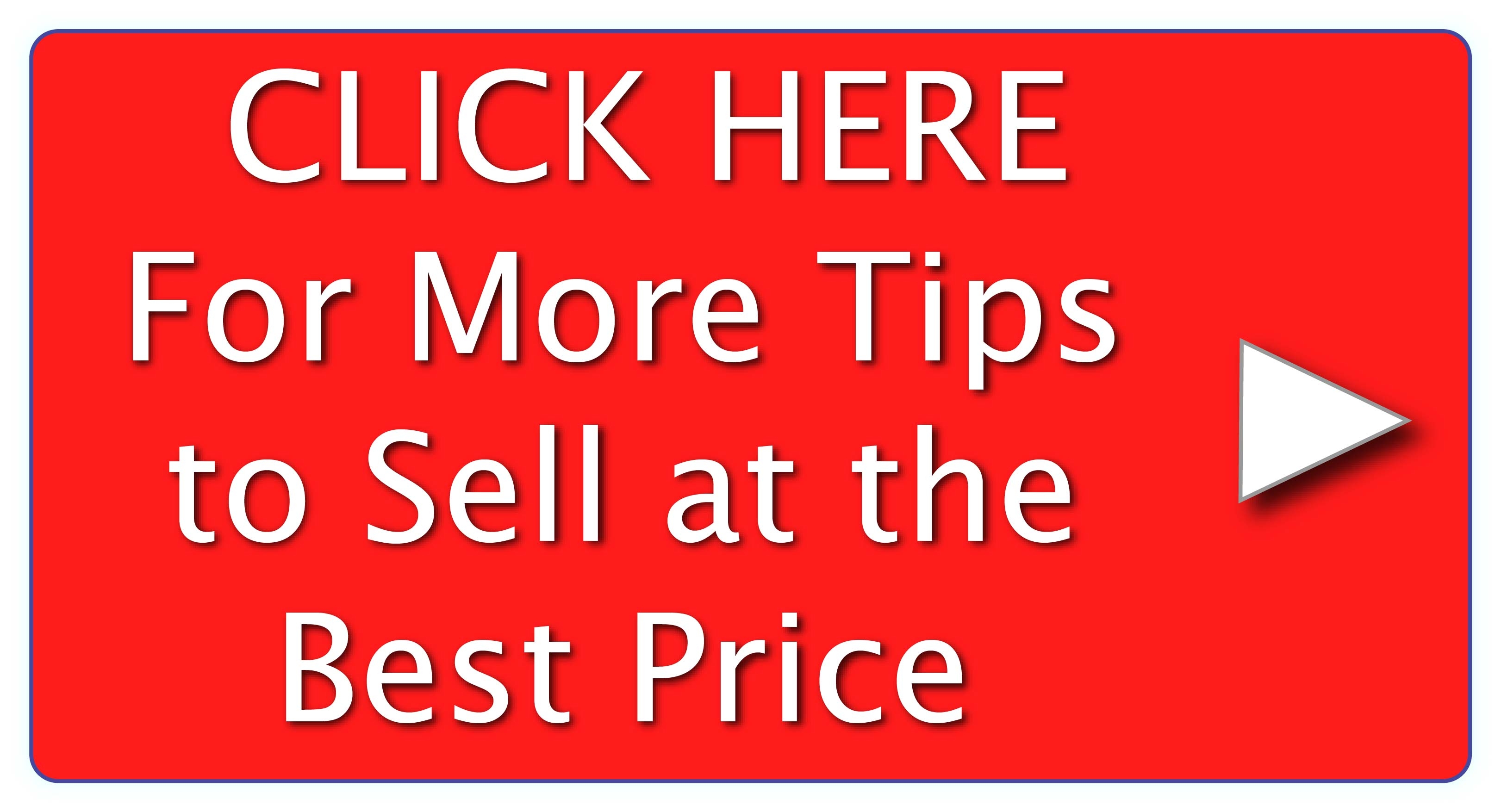Click for the 88 Expert Tips for Selling at the Best Price