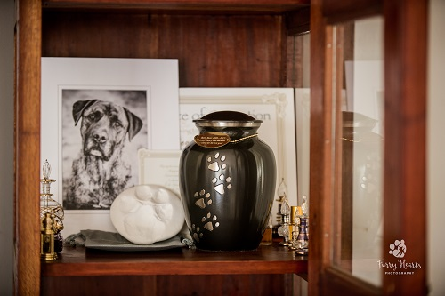 Standard Private Cremation - Under 9kg Pet
