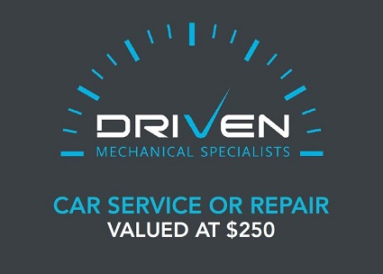Car service or repair - $250