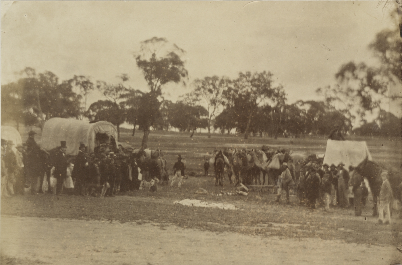 Group of people camped with horses