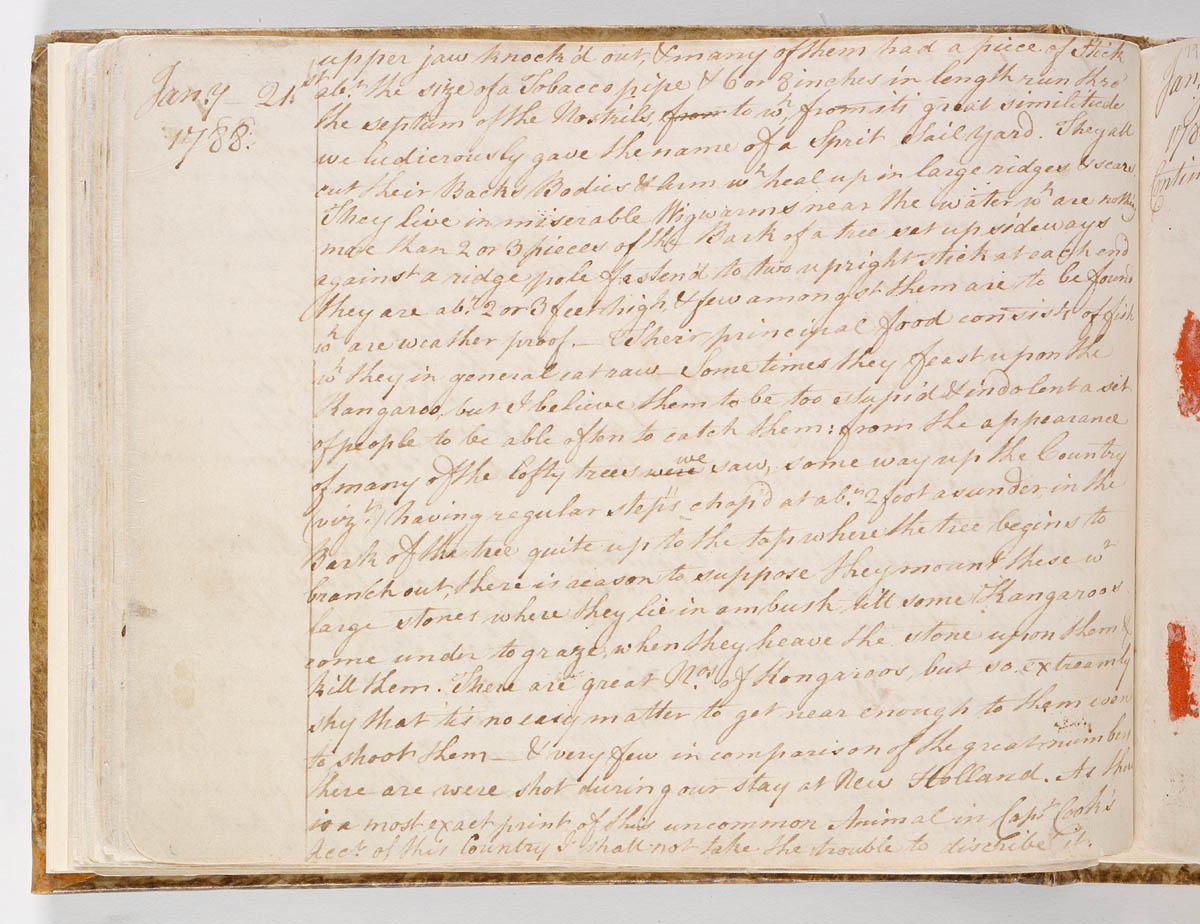 Journals from the First Fleet | From Terra Australis to