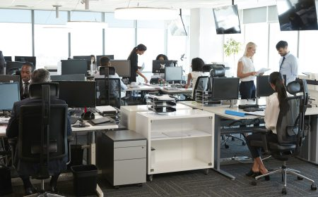 Transition to work - busy corporate office