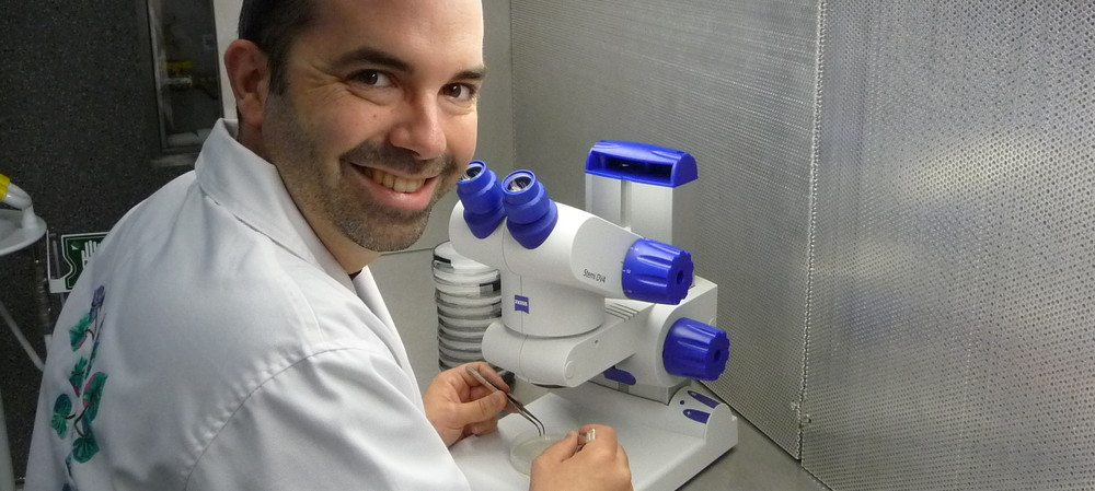 Understanding plant-microbe interactions