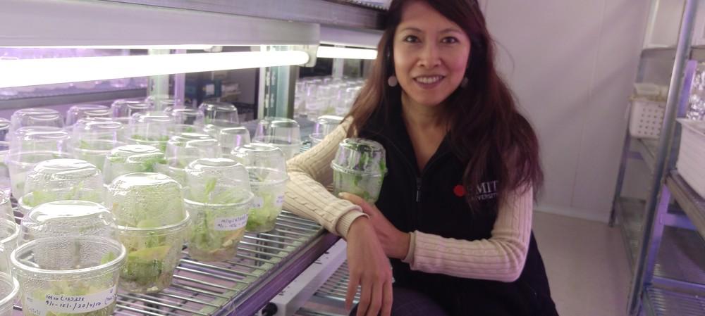 From Vietnam War refugee to STEM superstar