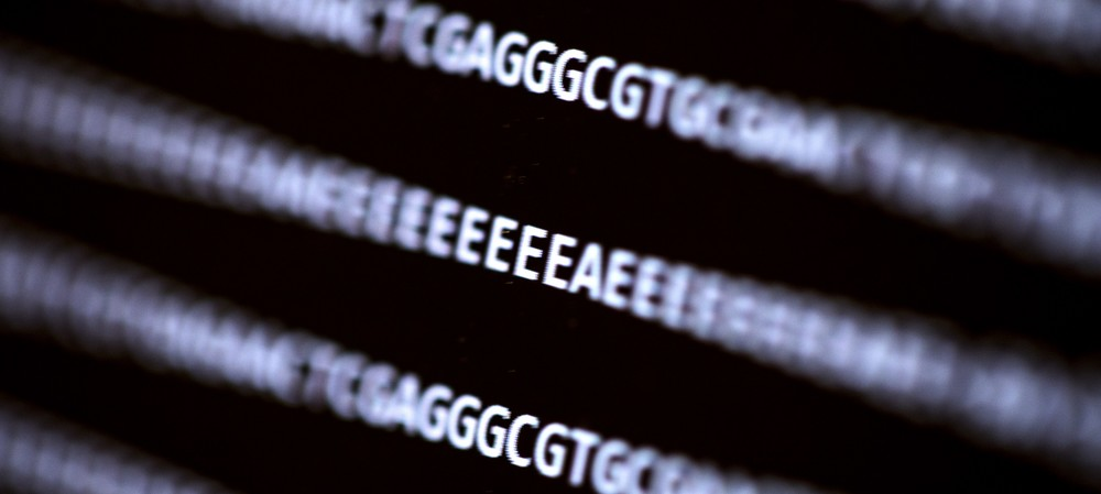 DNA sequencing programs vulnerable to cyber attack