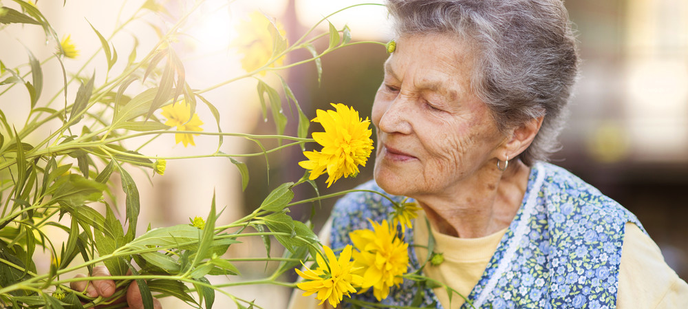 Sniffing out Alzheimer's early