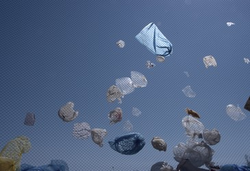 Queensland passes plastic bag ban, cash for containers scheme