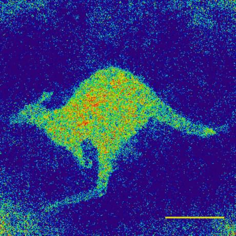 Quantum kangaroo raw physics scale