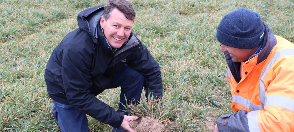 Biosolids from Sydney Water provide benefits for NSW farmers