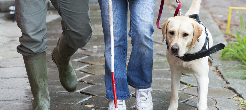 Vision impaired guided by beacon and GPS technology