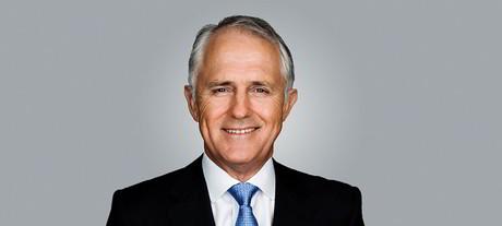 Malcolm turnbull carousel