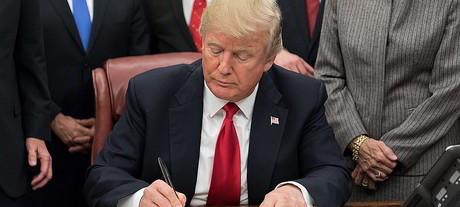 Donald trump potw14 carousel