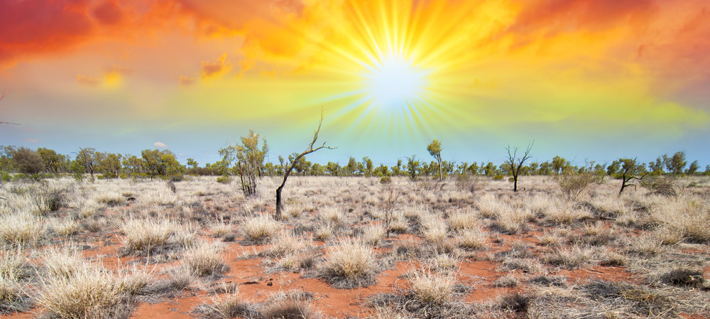 Coping with drought and water restrictions
