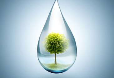 'Nature-based solutions' key to water management: UN report