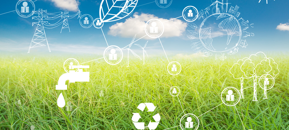 The rise of renewable cities