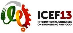 Icef13 hero logo