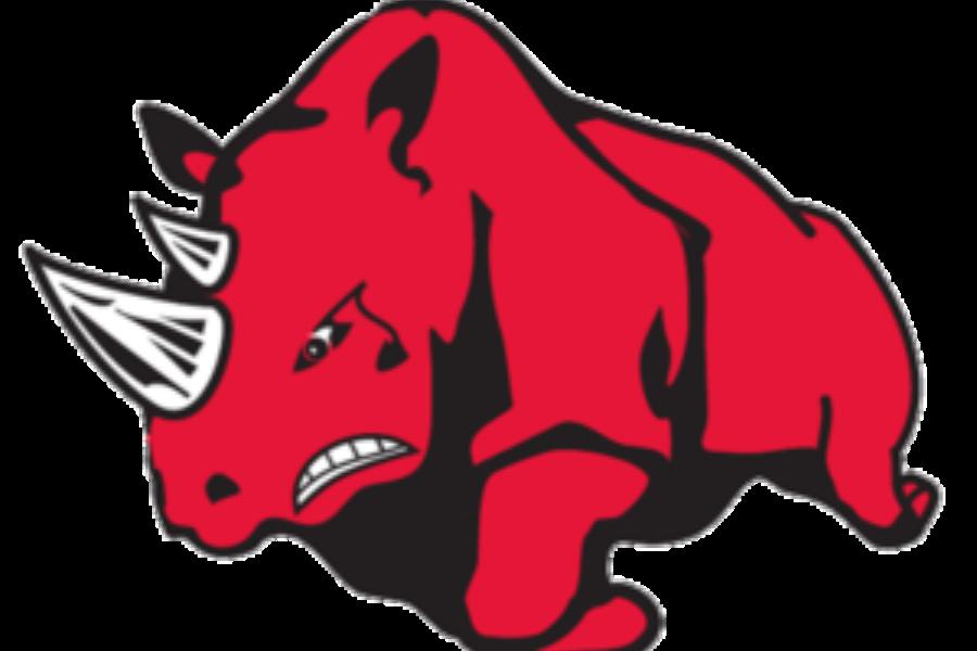 Rhinos Facilities Fund Banner