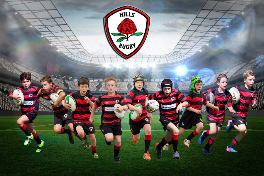 Hills Rugby 2019 Coaches and Managers Program Banner