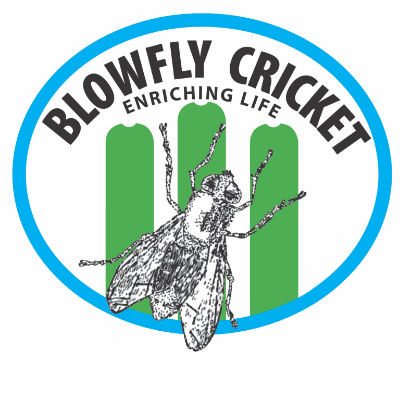 BlowFly Cricket 2019 Winter Season
